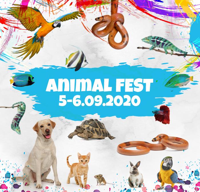 Animal Fest 2020